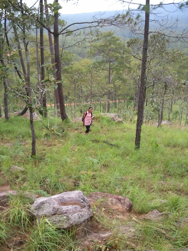 Sreymom, a biology major, collecting plants to take back and study.